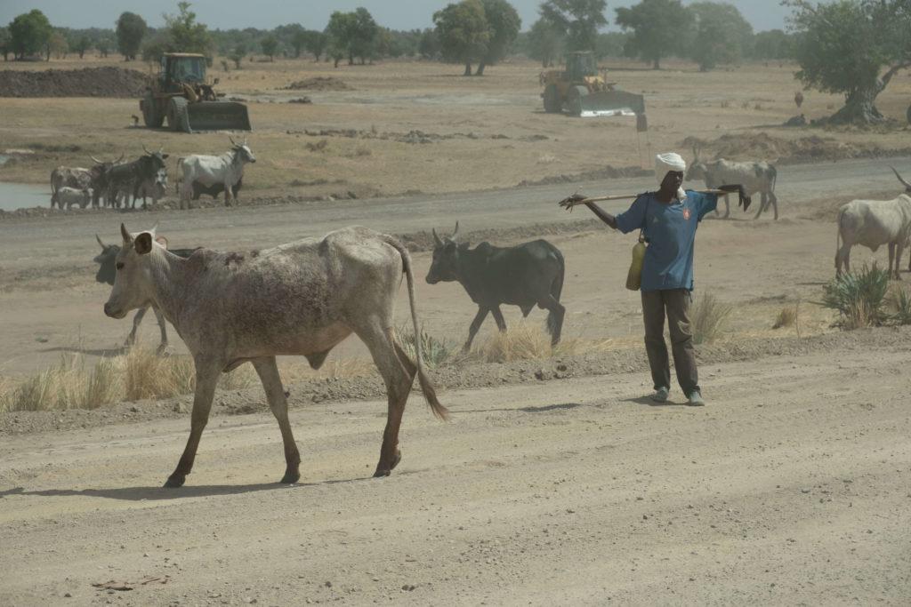 Tschad, Strom